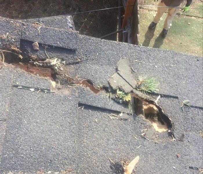 Tree Limb Damages Roof in Bend, OR Before