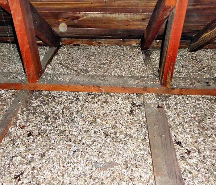 Biohazard What Is Vermiculite and Why Should You Be Concerned?