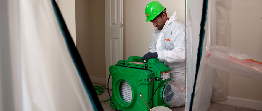 Bend, OR mold cleanup